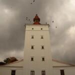 Remont Muzeum Połudnowego Podlasia wBiałej Podlaskiej zakończony