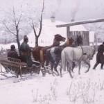 Konie, jeźdźcy, zaprzęgi wmalarstwie polskim XIX iXX wieku – nowa wystawa stała.