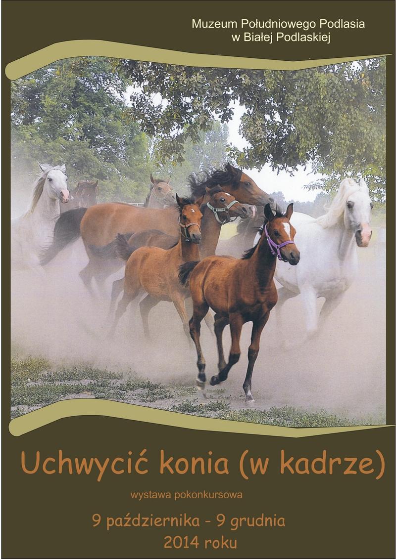 Uchwycić konia (wkadrze) - wystawa pokonkursowa.