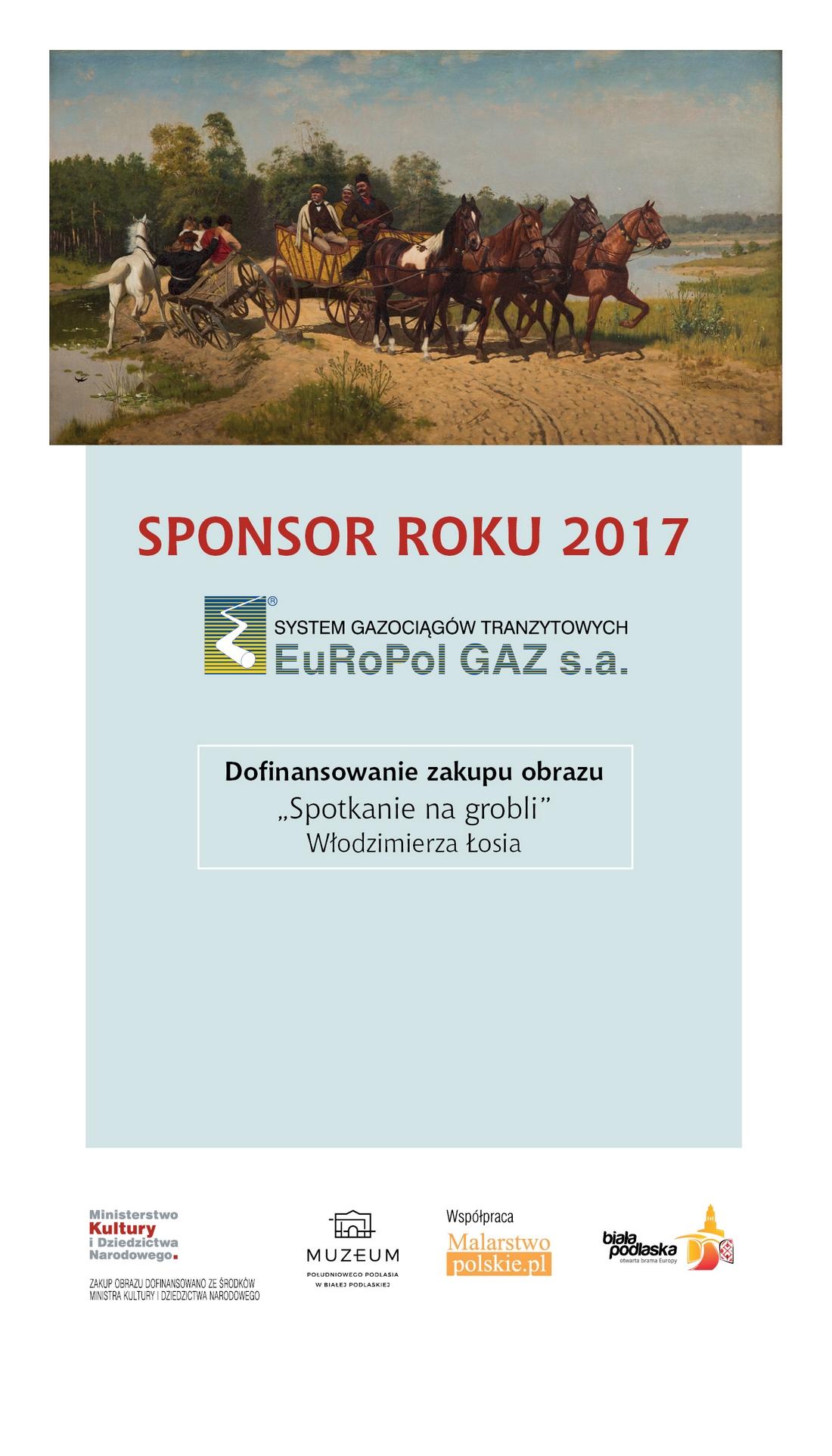 Sponsor roku 2017