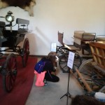 Warsztaty towarzyszą organizowanemu konkursowi  Konie, jeźdźcy zaprzęgi