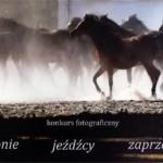 """Konkurs """"Konie,jeźdźcy, zaprzęgi"""" – edycja 2017"""